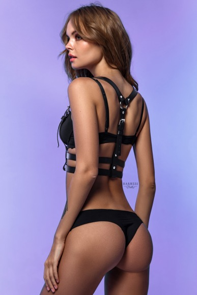 Classic harness with a double strap.  фото 3