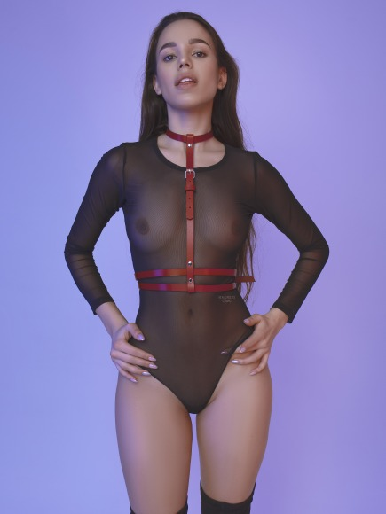 Classic harness with with a duble strap under the bust. фото 4