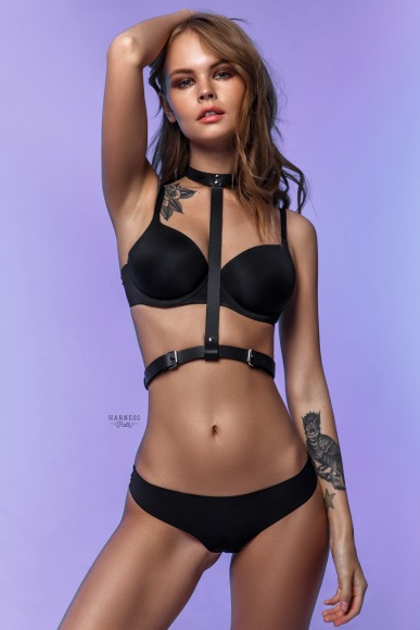 Classic harness with choker on the neck.  фото 1