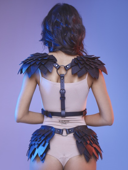 Harness set.  фото 1